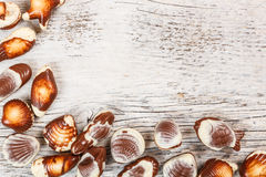 Chocolate seashell candies Stock Images