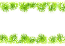 Frame Christmas fir and snow. The simple premise Christmas with fir branches and snowflakes on a white background Stock Photos