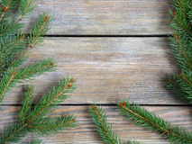 Frame with christmas green pine branch on wooden boards Royalty Free Stock Photos