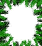 Frame from Christmas tree branch Royalty Free Stock Image