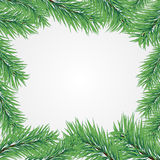 Frame with Christmas tree branch Stock Image