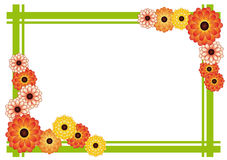 Frame of chrysanthemums. Frame of bright yellow and orange flowers and green strips on a white background Stock Photo
