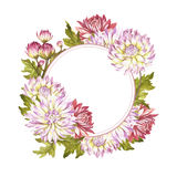 Frame with chrysanthemums. Hand draw watercolor illustration Royalty Free Stock Photography