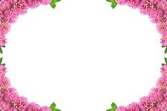 Frame with clover Stock Photos