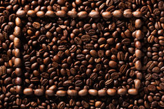 Frame of coffee beans on coffee beans Stock Image