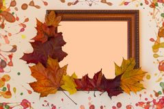 Frame and colored autumn leaves. Wooden frame and colored maple autumn leaves on pastel background stock photography