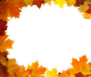 Frame of colorful autumn leaves Stock Image