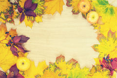 Frame of colorful autumn leaves and apples Stock Photography