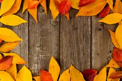 Frame of colorful autumn leaves on rustic wood Royalty Free Stock Images
