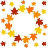 Frame with colorful autumn leaves Stock Photos