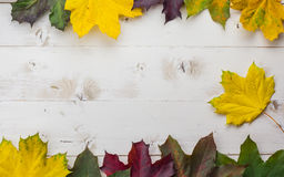 Frame of colorful autumn leaves in yellow, green and brown Stock Photography