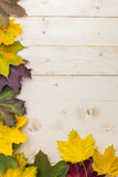 Frame of colorful autumn leaves in yellow, green and brown Royalty Free Stock Photos