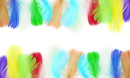 Frame of colorful bird feathers. With empty white space for text stock photography