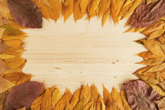 Frame from colorful dry autumn leaves on the wooden background. Royalty Free Stock Photography