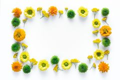 Frame With Colorful Flowers. Creative frame with colorful flowers on white background stock photos