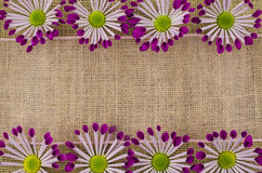 Frame of colorful flowers and pink ribbon on linen background Royalty Free Stock Images