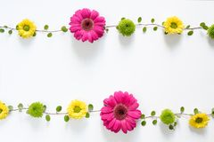 Frame With Colorful Flowers Royalty Free Stock Photo