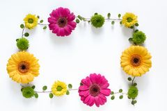 Frame With Colorful Flowers Stock Photos