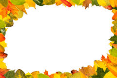 Frame with colorful leaves Stock Photo