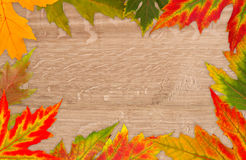 Frame of the colorful leaves. On a wooden background royalty free stock photo