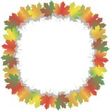 Frame from colorful maple leafs, shadow, on white, vector Stock Images