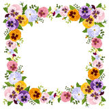 Frame with colorful pansy flowers. Vector illustration. Royalty Free Stock Photography