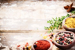 Frame with colorful spices Royalty Free Stock Photography