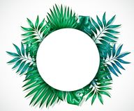 Frame of colorful tropical leaves. Concept of the jungle for the design of invitations, greeting cards and wallpapers. Stock Photography