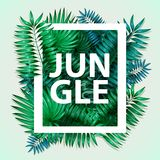 Frame of colorful tropical leaves. Concept of the jungle for the design of invitations, greeting cards and wallpapers. Royalty Free Stock Images