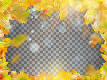 Frame composed of colorful autumn leaves. EPS 10 vector Stock Photo