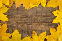 Frame composed of colorful autumn leaves on wooden rustic backgr Royalty Free Stock Photography