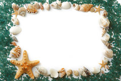 Frame composed of sea shells and sea salt Stock Photo