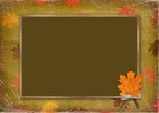 Frame for congratulation with bouquet of maples Royalty Free Stock Photos