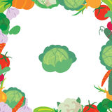 A frame consisting of different kinds of vegetables with cabbage in the center. On a white background Vector Illustration