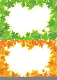 Frame consisting of maple leaves Royalty Free Stock Images