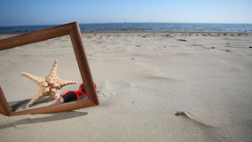 Frame copy space with starfish and sunglasses on the beach Stock Images