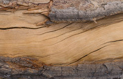 frame of cracked wood texture for background Stock Photos