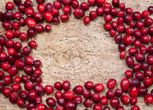 Frame of cranberries Stock Photo