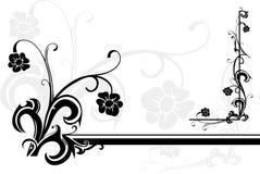 Frame da flor Imagem de Stock