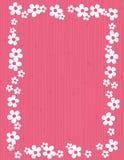 Frame da flor - mola Imagens de Stock