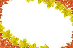 Frame da folha do outono Imagem de Stock Royalty Free