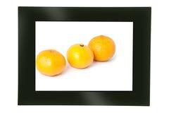 Frame da foto de Digitas Foto de Stock