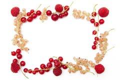 Frame da fruta Foto de Stock Royalty Free