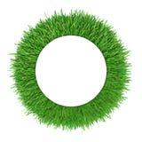 Frame da grama verde Espaço branco da cópia do círculo Fotos de Stock