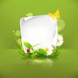 Frame da mola, verde Fotografia de Stock