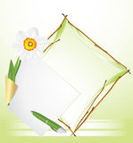 Frame with daffodil. Festive background Stock Image