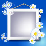 Frame, daisy and butterfly Stock Photos