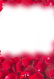 Frame of dark  red rose petals Royalty Free Stock Images