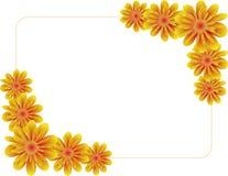 Frame das flores Imagem de Stock Royalty Free