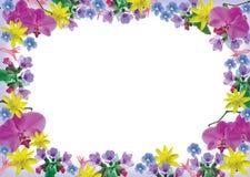 Frame das flores Fotos de Stock Royalty Free